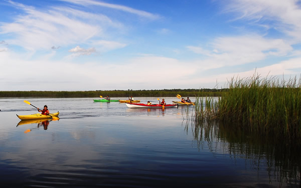 Kayak tours get guests and members out on the water.